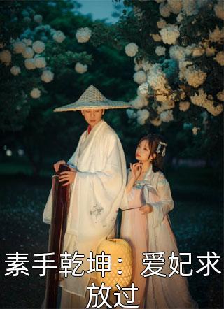 素手乾坤:爱妃求放过小说