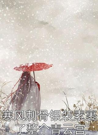 寒风刺骨银装素裹了整个青云宫小说
