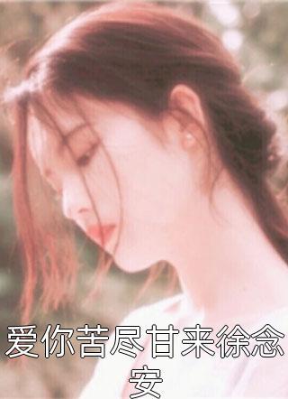 爱你苦尽甘来徐念安小说