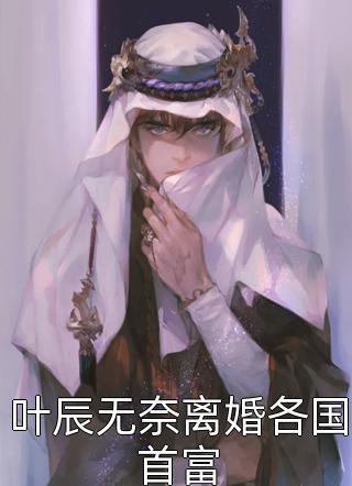 叶辰无奈离婚各国首富小说