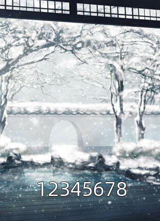 12345678小说