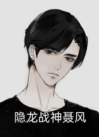 隐龙战神聂风小说