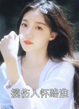 揽伤入怀路淮小说