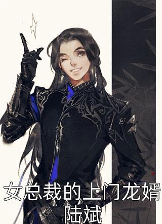 女总裁的上门龙婿陆斌小说